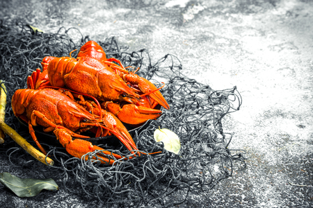 Fresh cooked crayfish. On a rustic background.