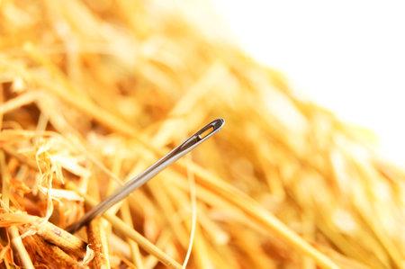 Needle in a haystack .