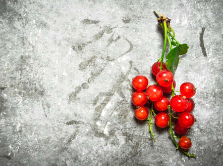 Branch of red currants. On a stone background.