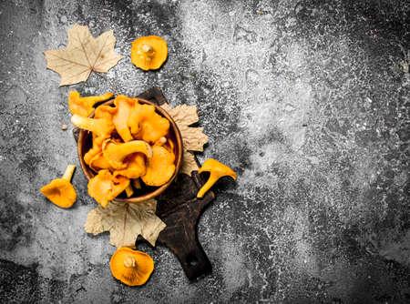 Fresh chanterelle mushrooms in a bowl. On a rustic background. Standard-Bild
