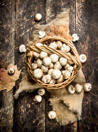 Fresh mushrooms in a basket. On a wooden background.
