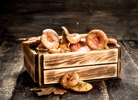 Fresh mushrooms in a box. On a wooden background. Stock Photo