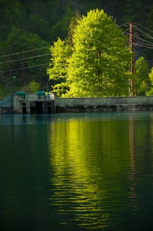 green river: green river