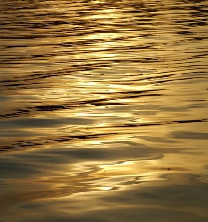 seawater: Golden shimmering Seawater Background Stock Photo