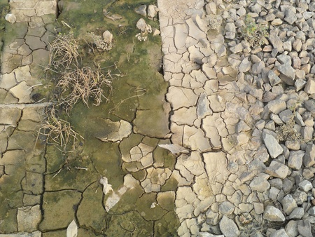 The soil surface is dry and cracked photo