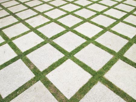 Stone pathway on grass