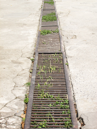 metal grate: Sewer grate that drains water from a parking lot