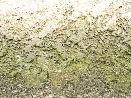 Green dirty super-grunge background. Humid concrete wall with cracks, smudges and stains Standard-Bild