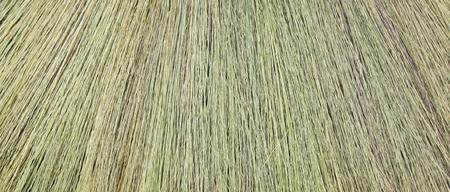 broomsticks: background broomsticks Stock Photo