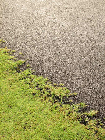 worn structure red: The grass on the asphalt road