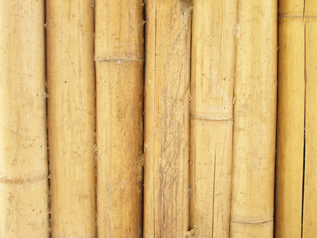 Dirty Old bamboo wall photo
