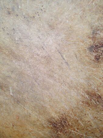 old leather: old leather texture - drumhead