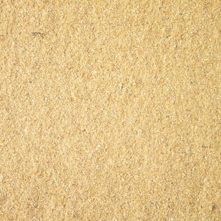 white sand beach: Sand beach background