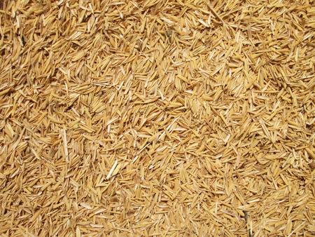 padi: Rice Husk