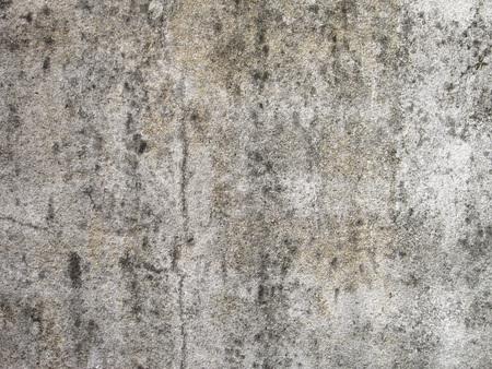 drop ceiling: Moldy wall