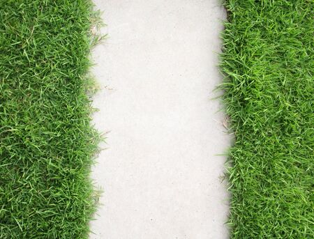 lawn grass: Grass with walkway background Stock Photo