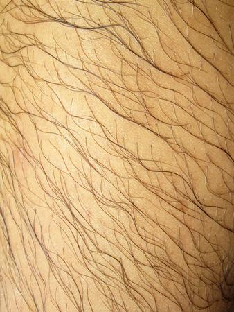 hairy: Mans hairy leg