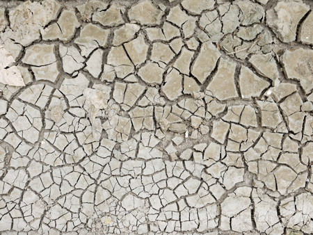 foundation cracks: Closeup of dry soil, Cracked Ground Background