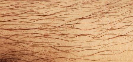 hairy closeup: Mans hairy leg texture closeup Stock Photo