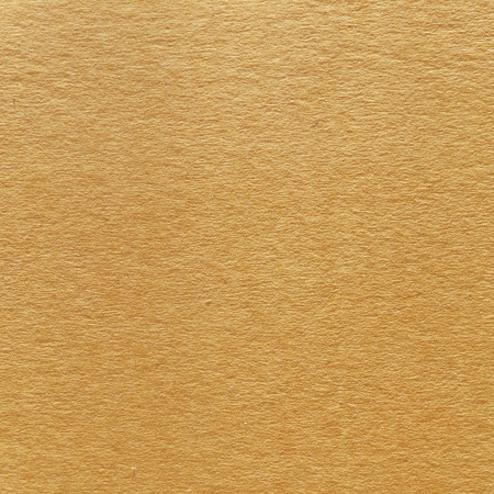 shipped: Paper texture - brown paper sheet