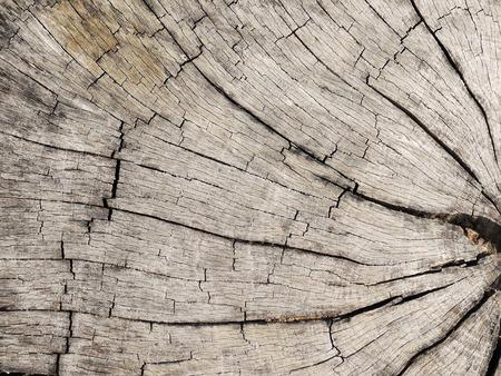 wood cut: Wood cut background