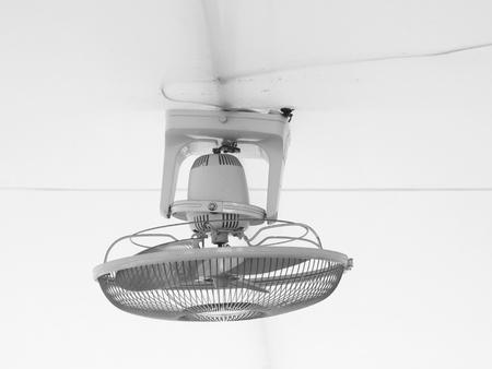 ceiling: Ceiling Fan