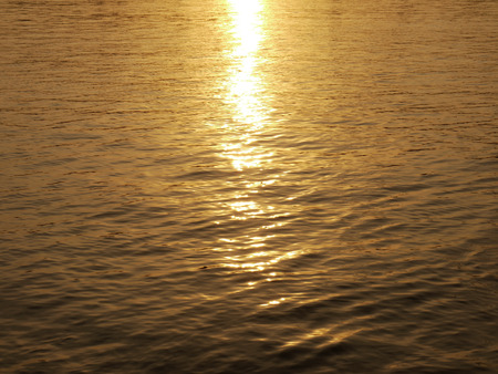 warm water fish: Sunset light water texture