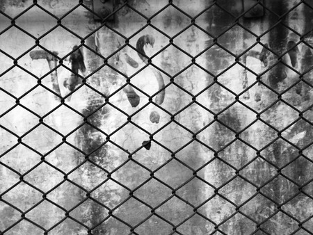 barb wire isolated: wire mesh background