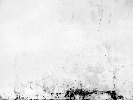 black mold: dirty white concrete wall background