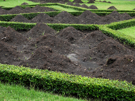 damage control: Mound for gardening