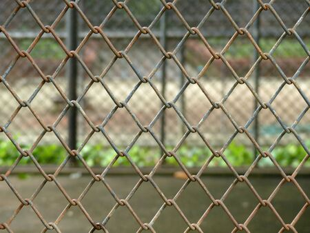 in a cage: metal cage