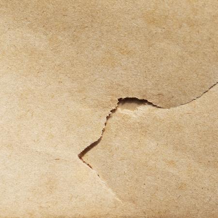 torn: torn brown paper