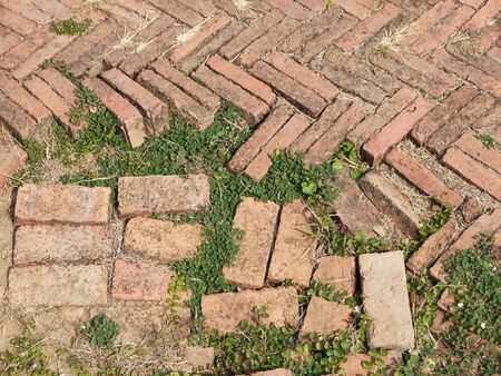 redbrick: The brick path with grass damage floor