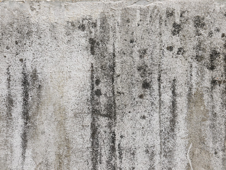 moldy: grunge moldy walls Stock Photo