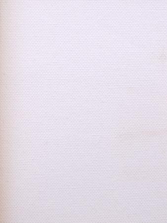 white canvas: old white canvas texture