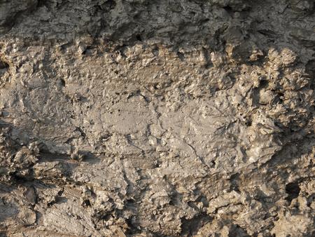 mud pit: mud texture