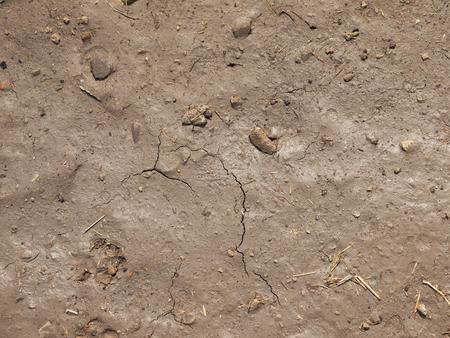 mud pit: brown soil wet texture