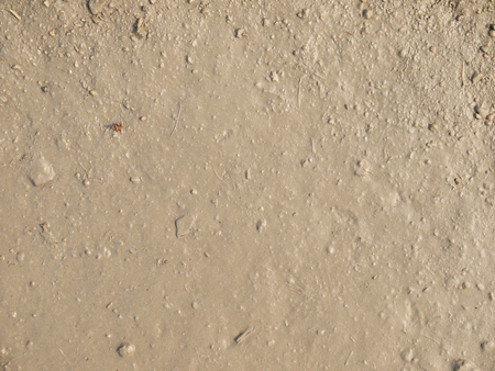 roughing: wet mud soil texture