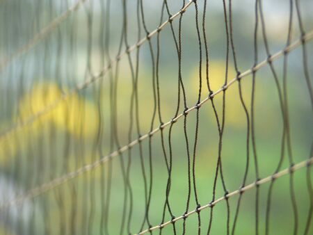 grand hard: Closeup sport mesh net