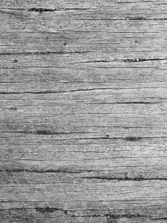 barnwood: old gray wood texture Stock Photo
