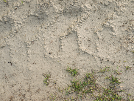 mud pit: soil mud with grass texture Stock Photo