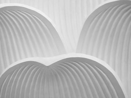 stucco: white lotus Stucco background