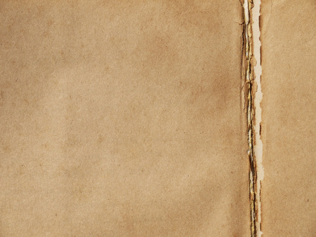 lacking: old brown paper book texture