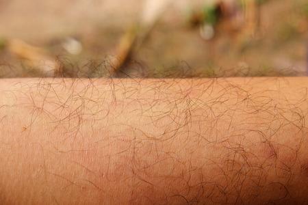 hairy closeup: Mans hairy leg closeup