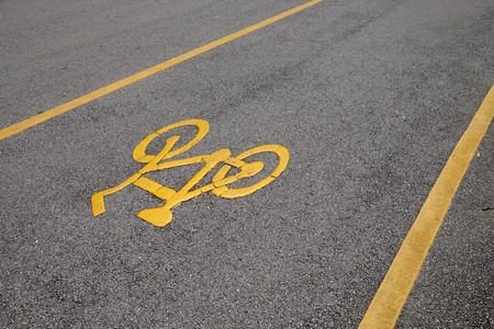 lanes: Bicycle Lanes in Park
