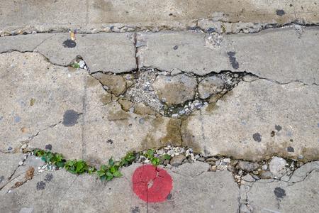 Cracked concrete texture closeup background