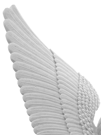 stucco: white feather stucco