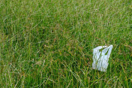 plastic bag on grass in the park
