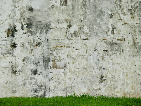 aged street grunge wall with green grass lawn