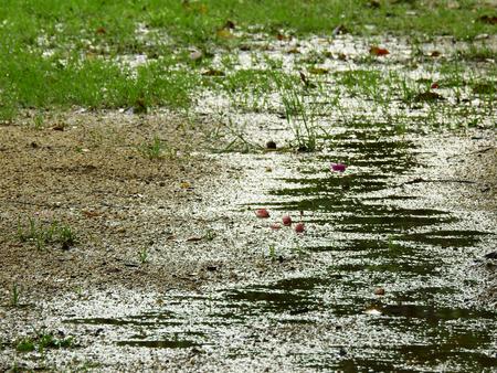 wet ground after rain